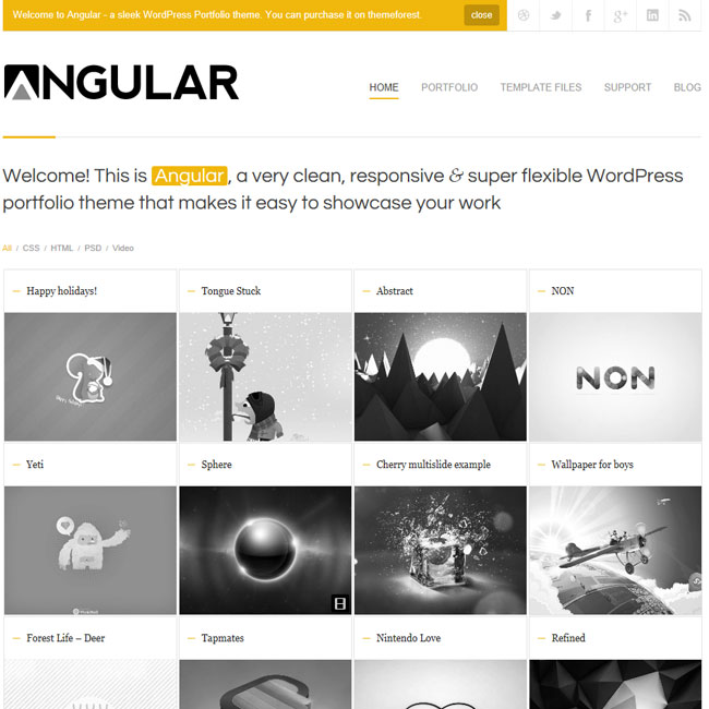 Angular - Responsive Portfolio Wordpress Theme | Best WordPress ...