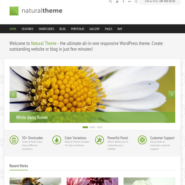 Natural – Responsive WordPress Theme