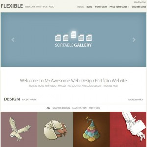 Flexible WordPress Theme by Elegant Themes
