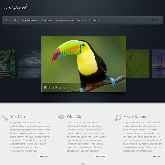 Envisioned WordPress Theme by Elegant Themes