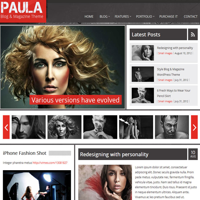 Paula WordPress Theme for Blog and Magazine