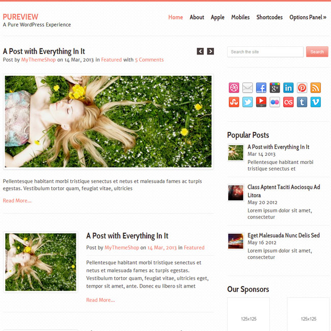 Pureview – Responsive WordPress Theme