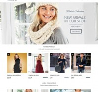 Anivia WordPress Theme for Different Purposes