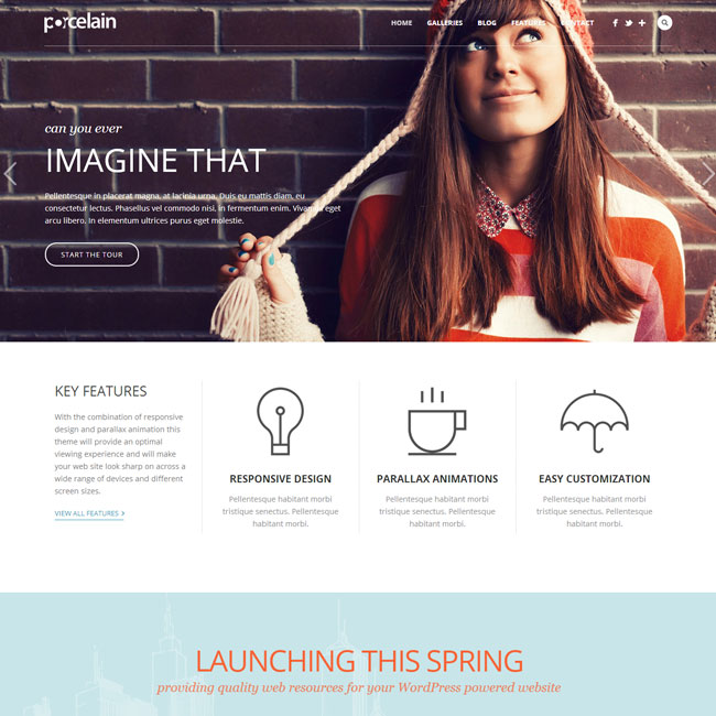Porcelain Portfolio WordPress Theme
