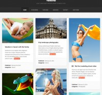 Fabulous WordPress Theme