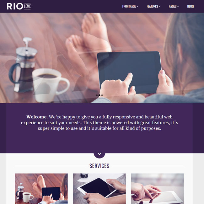 RioLeme WordPress Theme
