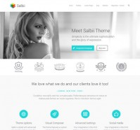 Salbii Multi-Purpose WordPress Theme
