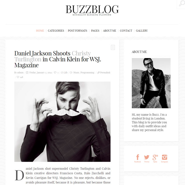 BuzzBlog – Personal WordPress Blog Theme