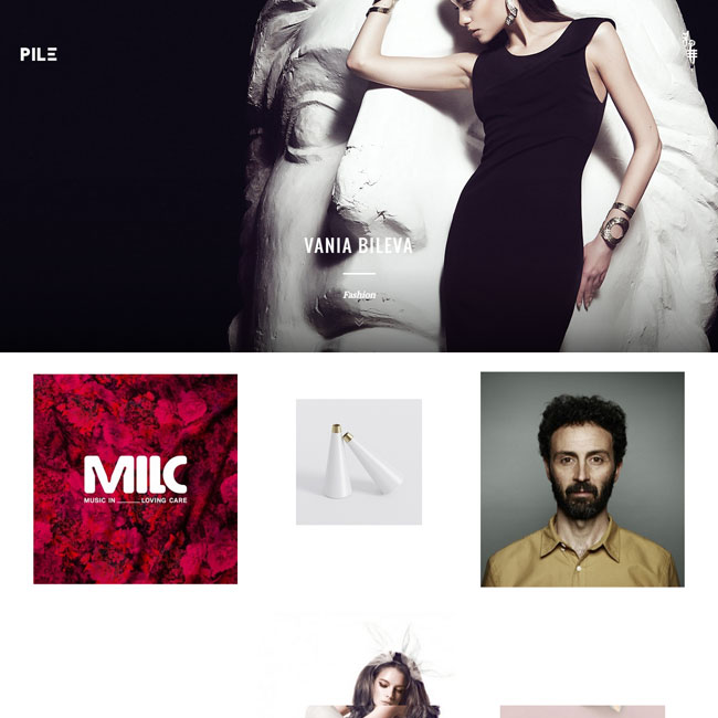 PILE Portfolio WordPress Theme