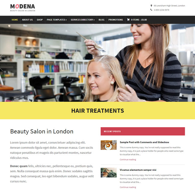 Modena WordPress Theme by WP-Zoom