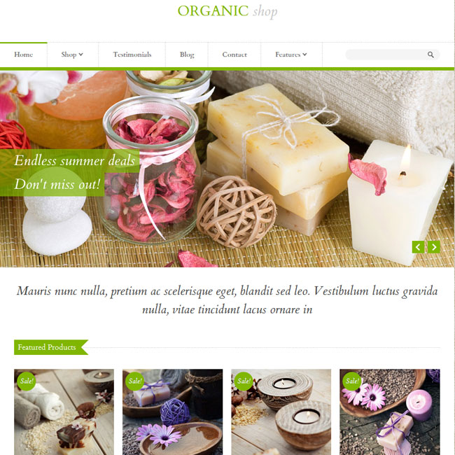 Organic Shop - eCommerce WordPress Theme
