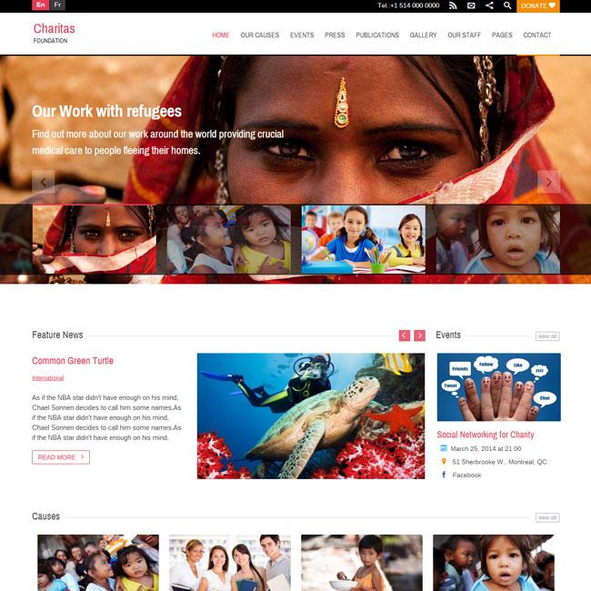 Charitas WordPress Theme for Foundation Websites