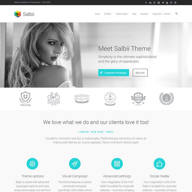 Salbii Multi-Purpose WordPress Theme