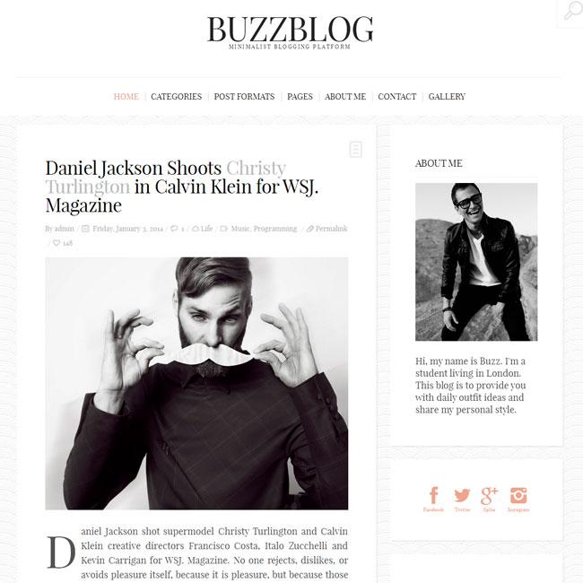 BuzzBlog – Personal WordPress Blog Theme