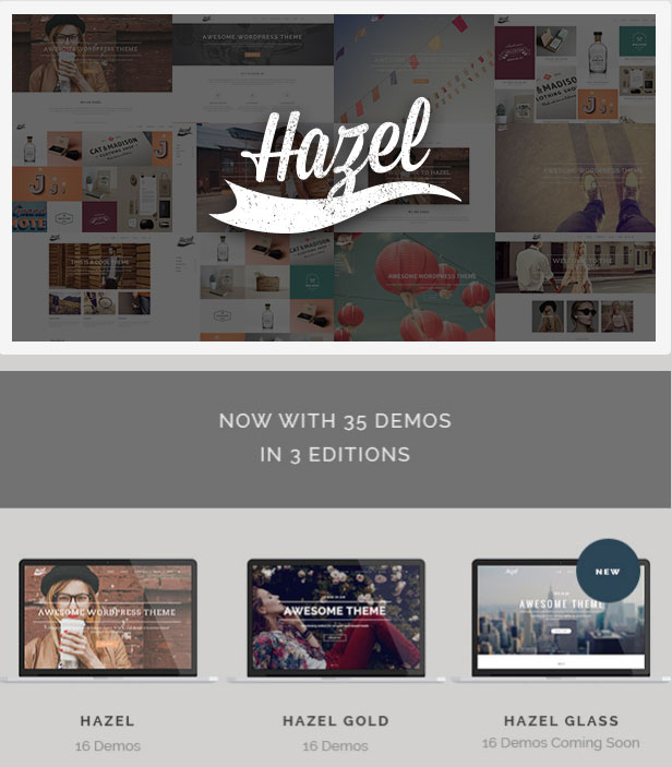 hazel-theme-review