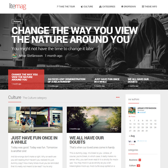 LiteMag – Minimalist Magazine WordPress Theme
